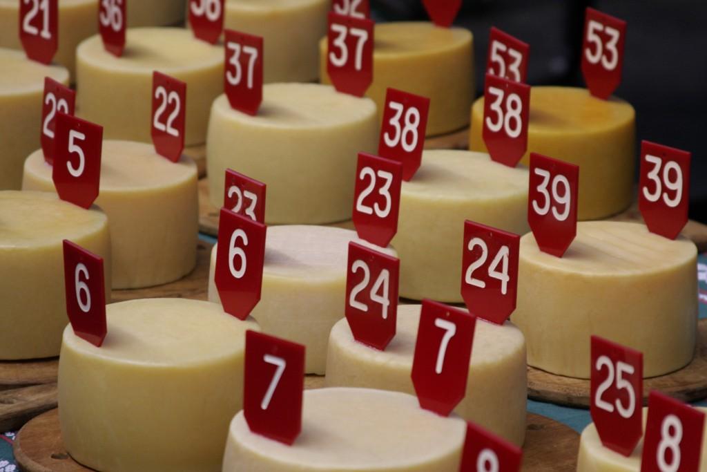 конкурс сыра в ордисии